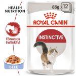 Royal Canin Instinctive i gelé - 12 x 85 g