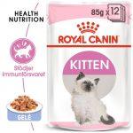 Royal Canin Kitten i gelé - 24 x 85 g Mix Kitten Instinctive i sås & gelé