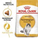 Royal Canin Norwegian Forest Cat - Ekonomipack: 2 x 10 kg
