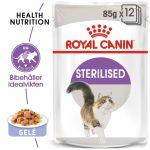 Royal Canin Sterilised i gelé - 48 x 85 g